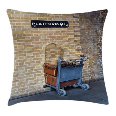 Wizard Throw Pillow Cushion Cover
